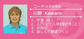 stuff_kawano